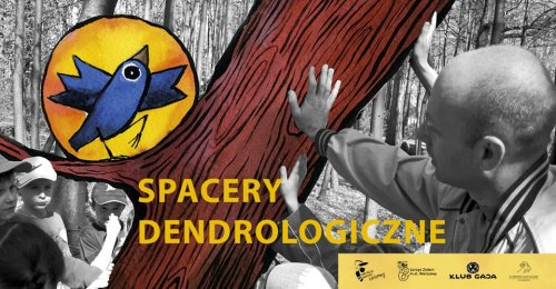 Spacery dendrologiczne